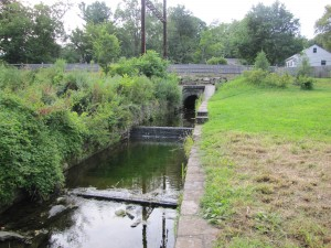 Basin Aug 2013 (2)