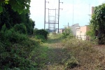 ivy-ridge-trail-clean-up-july-2008.jpg